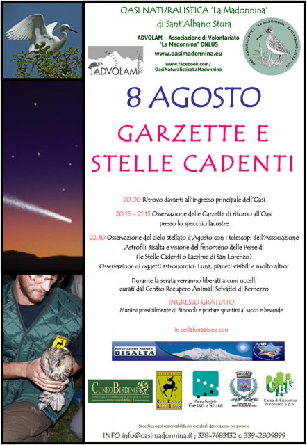 garzette&stellecadenti2014