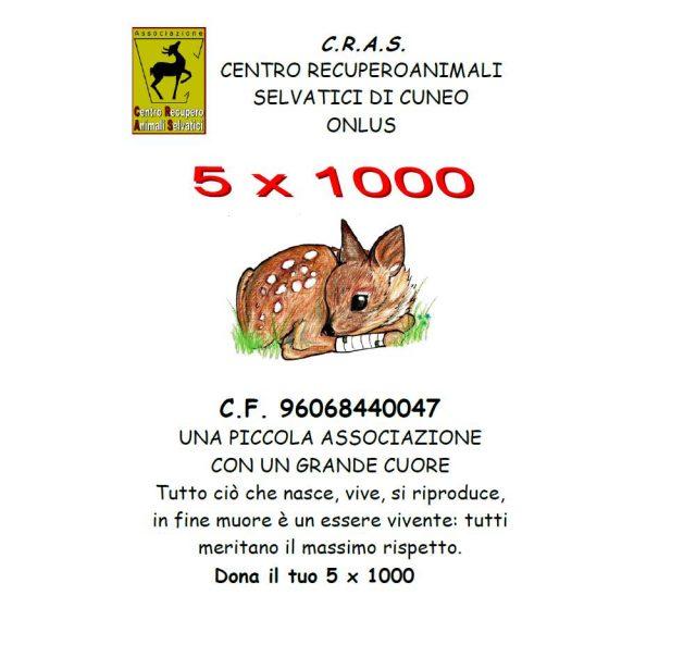 5x10002016